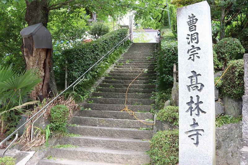 福島県中通り紫陽花の名所 おすすめ! 二本松「あじさい寺 髙林寺」