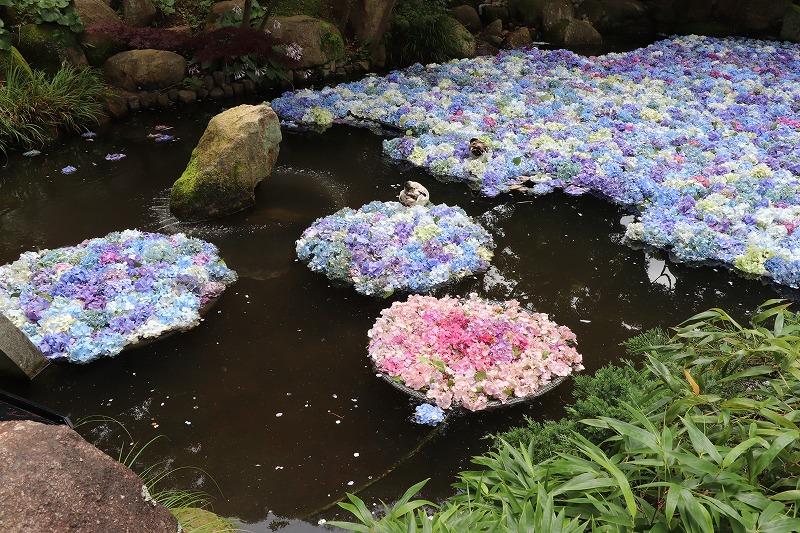 2020年 茨城県 雨引観音 紫陽花を見てきました!(後編)と告知!