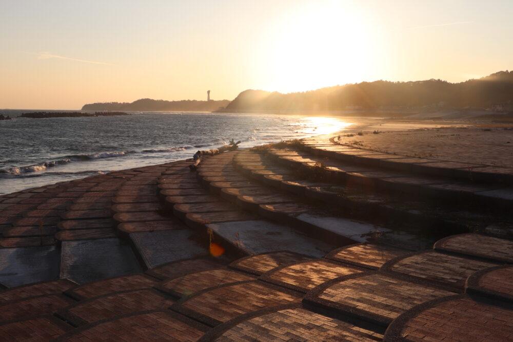 いわき市永崎海岸に「海竜」が流されてきた~~~!フタバスズキリュウかぁ?