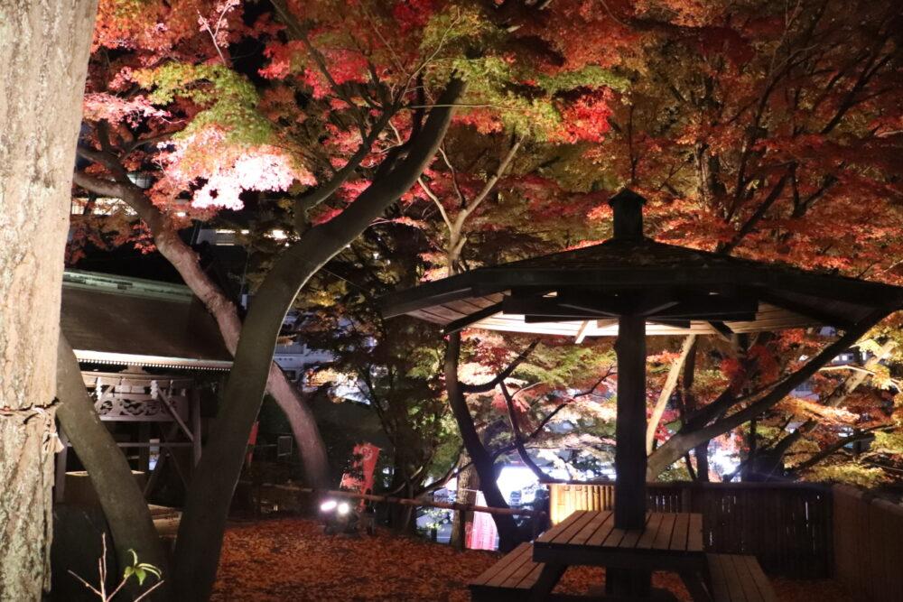 知ってますか? いわき市湯本町「温泉神社のライトアップ」は数分ごとに照明操作で様変わり!